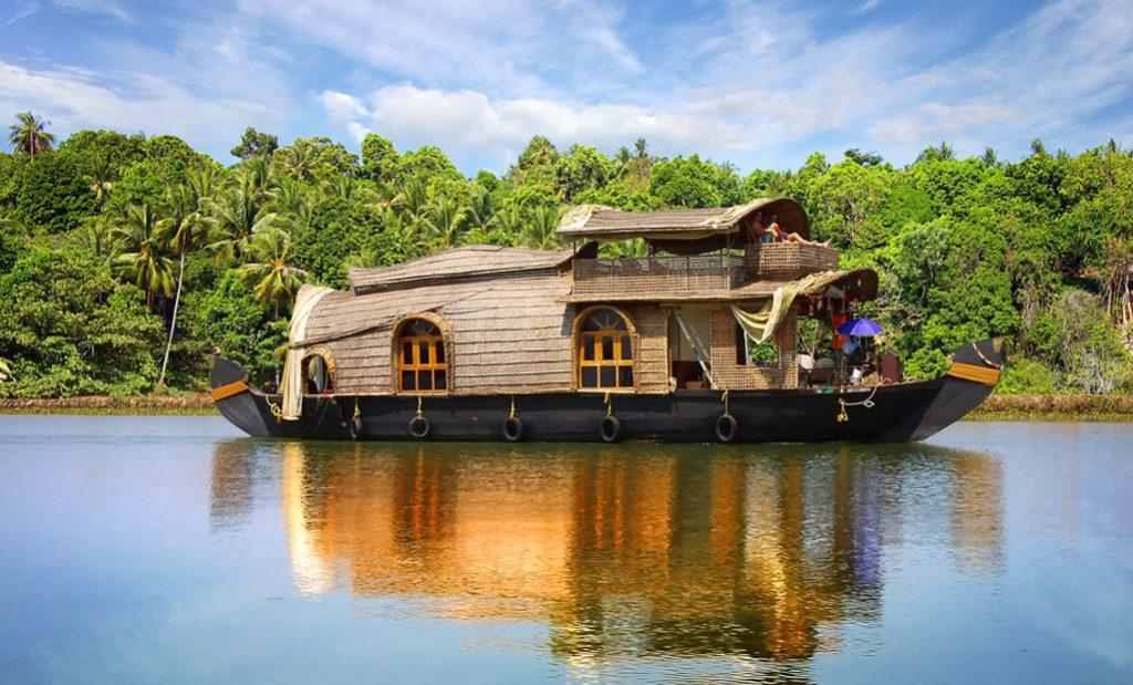 wildlife-in-kerala-backwaters-of-Kerala